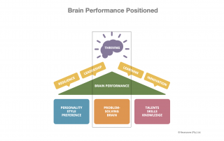 Brain Performace Positioned